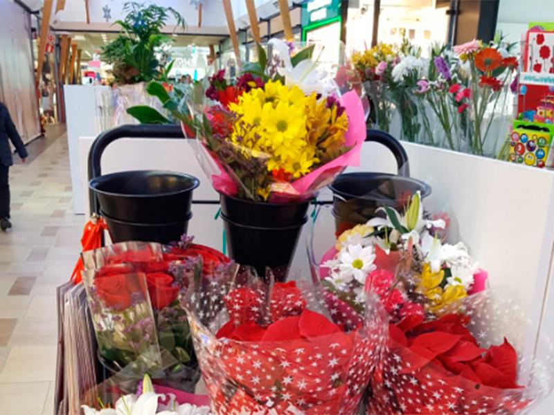 Olivia´s Flowers
