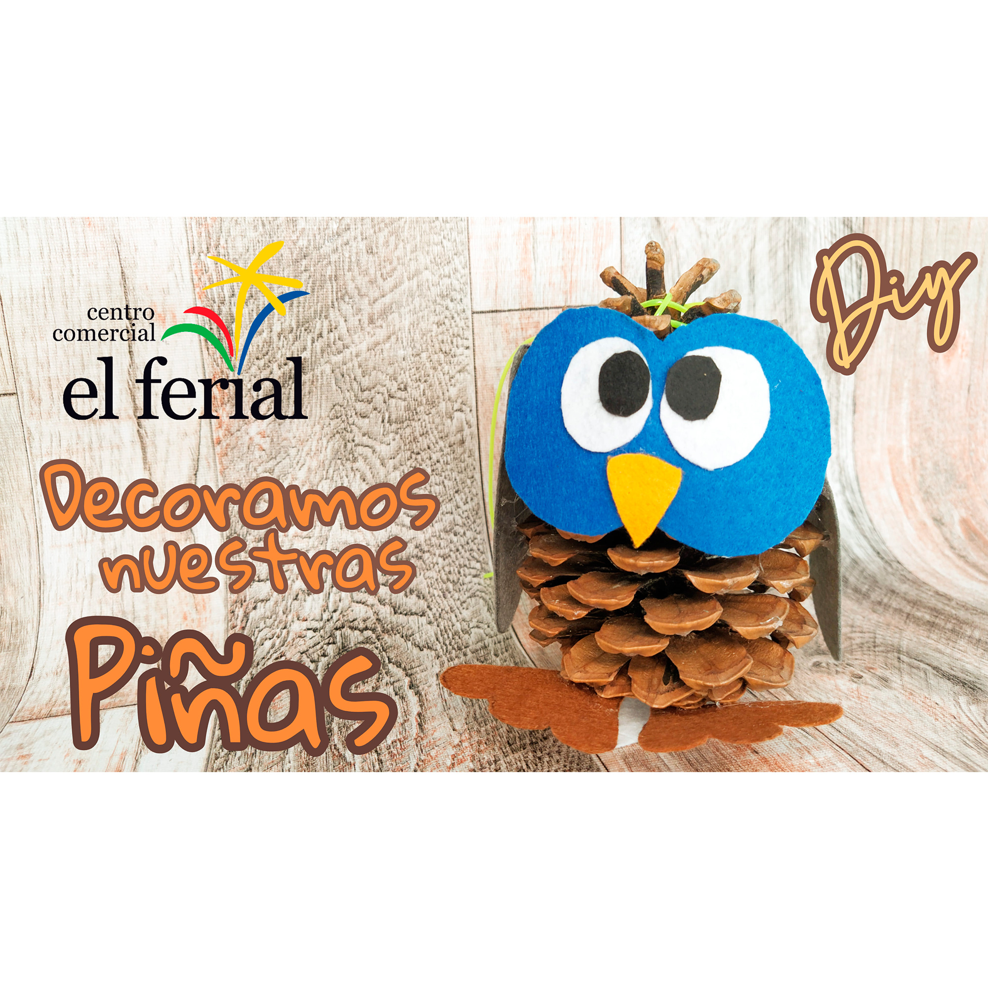 Taller DIY 16/10/2021: Piña búho